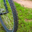 Stock Photo: Bicycle Wheel
