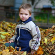 Child in autumn leaves — Stock Photo