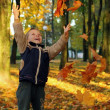 Royalty-Free Stock Photo: Child throwing autumn leaves