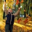 Child throwing autumn leaves - Stock Photo