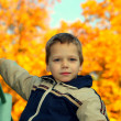 Royalty-Free Stock Photo: Boy in autumn