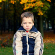 Stock Photo: Little boy sitting on bench