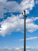 Electric Lines against the Sky — Stock Photo