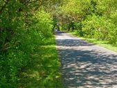 Road through countryside — Stock Photo