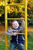 The cheerful boy — Stock Photo