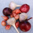 Garlic And Onion Bulbs - Stock Photo