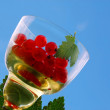 Red Currant In The Wineglass - Stock Photo