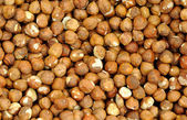 Closeup Shelled Hazelnuts — Stock Photo