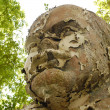 Shabby and Flaky Bust to Lenin — Foto de Stock