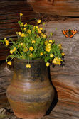 Hungerweeds In Ceramic Flowerpot And But — Stock Photo