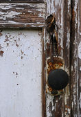 Shabby Door — Stock Photo