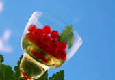 Red Current In The Wineglass — Stock Photo