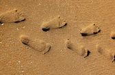 Huellas sobre la arena — Foto de Stock