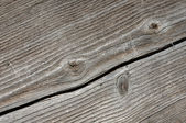 Cracked Wood Plank — Stock Photo