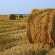 Haymaking at the End of Summer - Stock Photo
