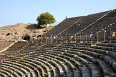 Rows of Ancient Theater in Ephesus — Foto Stock