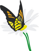 Butterfly on flower 02 — Vector de stock