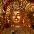 Portrait of Buddha — Stock Photo