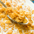 Royalty-Free Stock Photo: Cornflakes