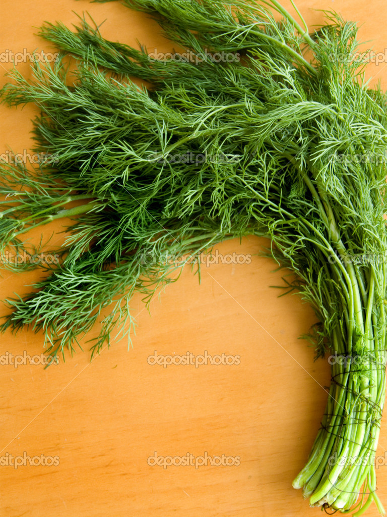 Fresh green fennel on the wooden table. — Stock Photo #1075794