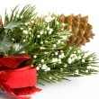 Christmas pine — Stock Photo #1081053