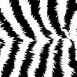 Zebra pattern — Stock Photo #1680170