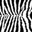 Royalty-Free Stock Photo: Zebra pattern