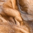 Mink fur — Stock Photo #1680247