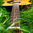 Royalty-Free Stock Photo: Guitar in Grass