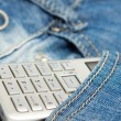 Royalty-Free Stock Photo: Phone in the pocket