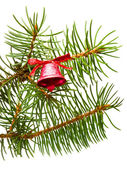 Bell hanging on a green spruce branch — Stock Photo