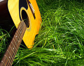 Guitar in Grass — Stock Photo