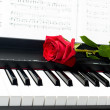 Romantic concept - red rose on piano key — Foto Stock