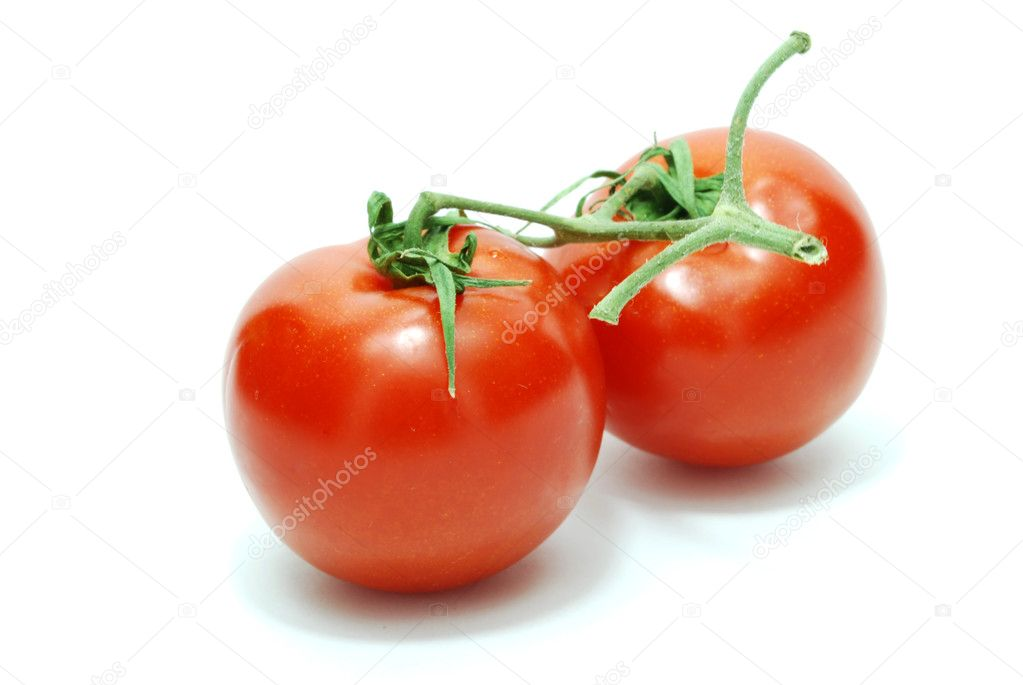 Two Isolated Red Tomatoes on White Background  Stock Photo #1011559