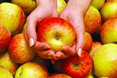 Hands Holding Apple — Stock Photo