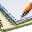 Notebooks and Pen — Stock Photo