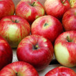Apples in Rows — Stock Photo #1233579
