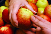 Apple van hand in hand — Stockfoto