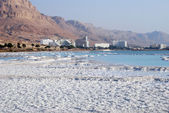 Dead Sea salt — Stockfoto