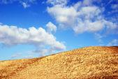 Colline du désert — Photo