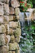 Tropik şelale — Stok fotoğraf