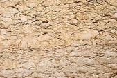 Frammento di roccia antica — Foto Stock