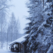 Stock Photo: Wooden cottage in winter forest covered by snow