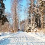 Winter Road — Stock Photo #1703815