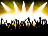 Concert crowd — Stock Photo