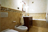 Bathroom in old style — Stock Photo