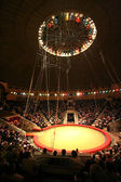 Modern circus — Stock Photo
