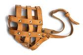Leather muzzle — Stock Photo