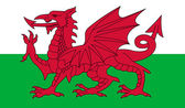 Wales Flag — Stock Vector