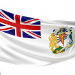 British Antarctic Territory Flag — Stock Photo